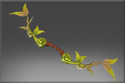 Uncommon Bow of the Sun Vine